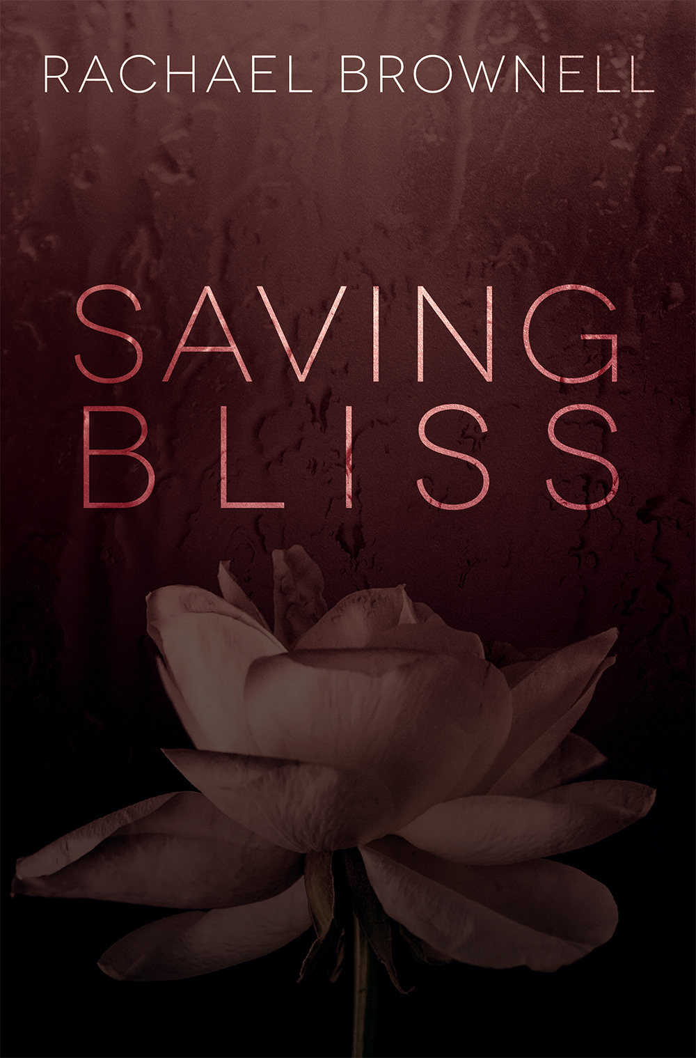 Saving Bliss Rachael Brownell